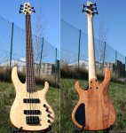 Acepro 5-String_merged.jpg