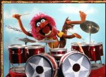 Animal-rockin-on-the-drums.jpg
