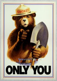 Uncle_Sam_style_Smokey_Bear_Only_You.jpg